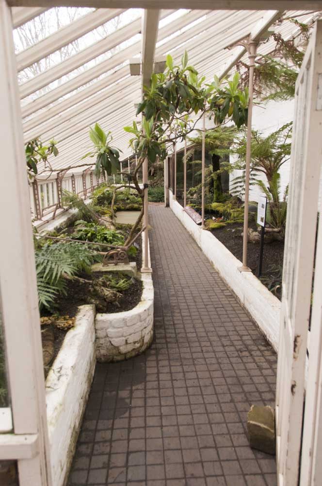 Chelsea Physic Garden Chelsea SW3