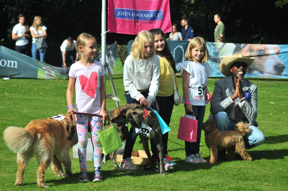 Chiswick House Dog Show