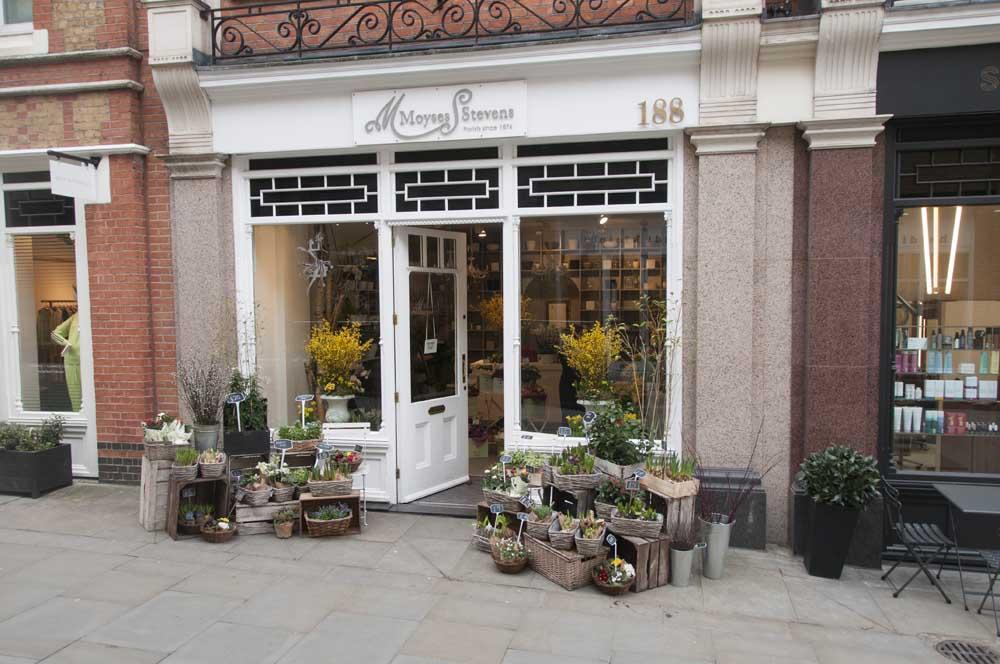 Moyses Stevens 188 Pavilion Road, Chelsea, London SW3 2BF