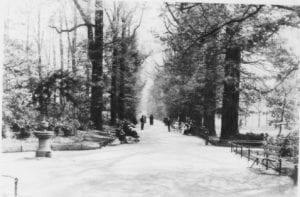 Ravenscourt Park Avenue