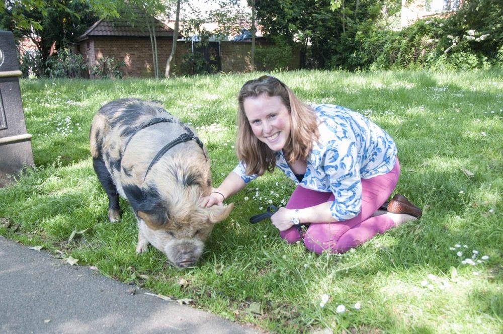 Keep Things Local - The Pig Lady - Antonio Pugh-Thomas
