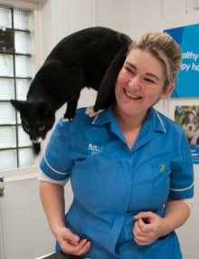 Blue Cross Hospital Hammersmith: Passionate About Pets